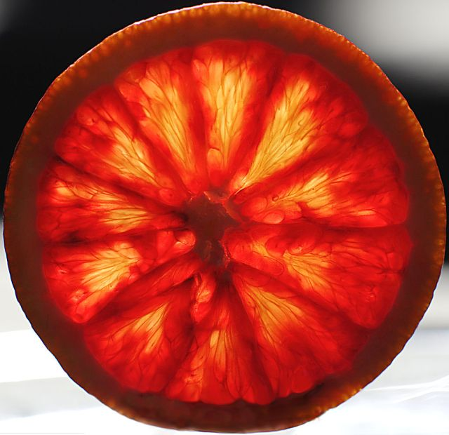 By Eric Hill from Boston, MA, USA (Blood Orange) [CC-BY-SA-2.0 (http://creativecommons.org/licenses/by-sa/2.0)], via Wikimedia Commons