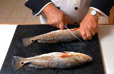 fishscales1