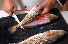 fishscales2