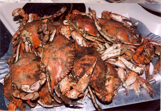Steamed crabs in the Chesapeake Bay, Maryland. By Mary Hollinger, NOAA/NESDIS/NODC (ret.) (NOAA Photo Library: line4170) (Public domain), via Wikimedia Commons