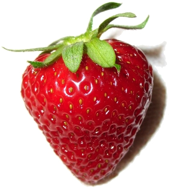 Strawberries' seeds are on the outside. Photo by Rlaferla at English Wikipedia