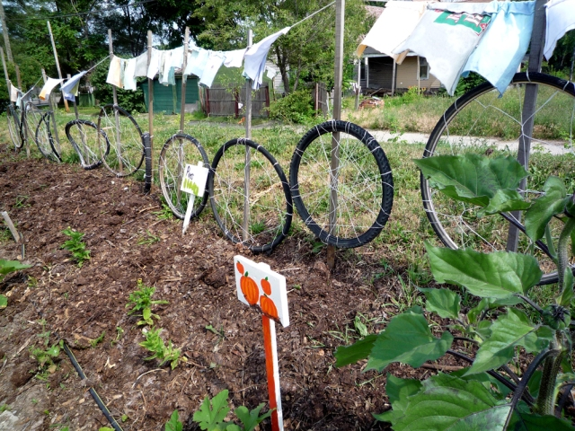 A combined fence, recycled-tire trellis and clothesline at the Earth Works community garden in Detroit.Photo by Jessica Reeder, via Wikipedia Commons
