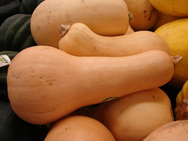 Butternut squash. Image by Forest & Kim Starr via Wiki Commons